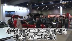 'EV 트렌드 코리아' 테슬라, 모델X·S 전시