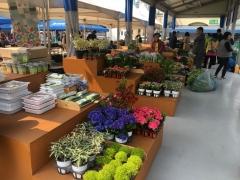 의왕시, '농산물 직거래장터' 개장…신선한 먹거리 제공