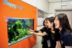 인천교통공사, 인천시청역 승강장에 `디지털 수족관` 설치