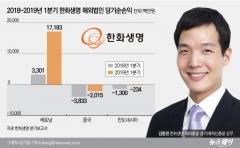 '한화 3세' 김동원, 한화생명 해외사업 첫 성적 합격점