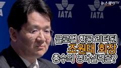 글로벌 항공 리더된 조원태 회장…총수의 영어실력은?
