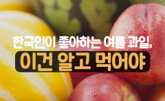 한국인이 좋아하는 여름 과일, 이건 알고 먹어야