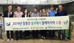 장흥산 블루베리, 동남아 수출 본격화