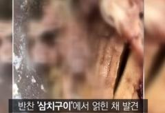 '급식에서 고래회충이?'…인천 고교 생선반찬서 발견