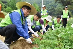 이대훈 NH농협은행장, 의왕시 원터마을서 농촌일손돕기 활동 펼쳐