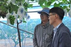 김제시농업기술센터, 시설과수경영체 영농현장 맞춤형 현장기술지원 펼쳐