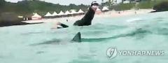 함덕해수욕장서 상어 나타나…물놀이 전면 통제