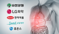 국내제약사, 30조 비알콜성 지방간염 치료제 시장에 눈독