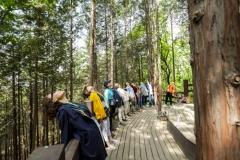 인천시, 치유의 숲 2021년까지 대규모 조성...3년간 48억 투입