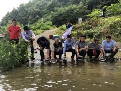 섬진강, 토종 어린 다슬기 40만 마리 방류