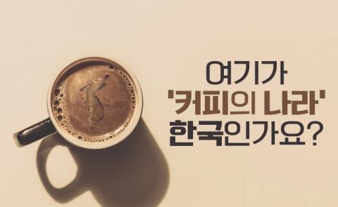 여기가 '커피의 나라' 한국인가요?