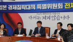 민주당, '對日카드' 만지작…수출제한·여행금지 등