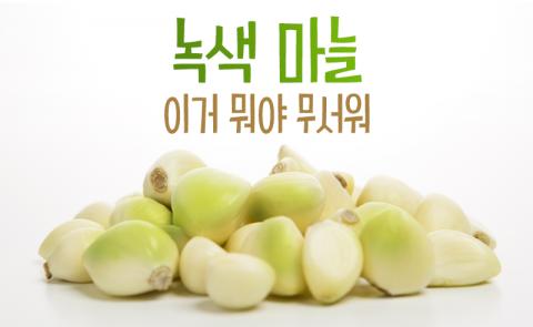 녹색으로 변한 우리집 마늘, 먹어도 괜찮나요?