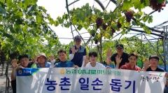 농협하나로마트 남악점, 포도수확 '농촌일손돕기' 펼쳐