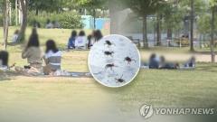 벌초·성묘 때 야생진드기 조심…올해 SFTS 환자 27명 숨져
