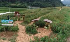 한국도로공사 광주전남, 대강졸음쉼터 인근에 산책로 조성