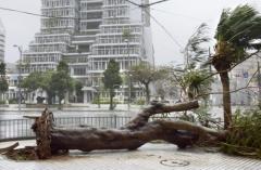 일본, 태풍 '타파'에 항공기 결항·부상자 속출…피해 잇따라