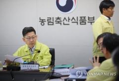 경기도 김포서 '아프리카 돼지열병' 의심신고 접수…한강 이남 첫 신고