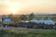 '영산강 서창들녘 억새축제' 도심속 힐링 생태축제로 자리매김
