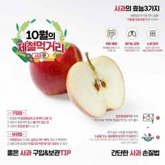 """""""한국인이 가장 사랑하는 과일 '사과', 지금 맛보세요!"""""""