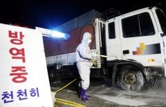 용인시, 아프리카돼지열병 유입 차단 '철통 방역체제' 가동
