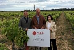 롯데마트, 초가성비 프랑스 와인 2종 출시
