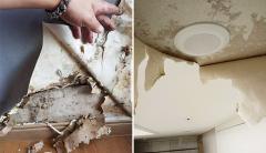 350 가구 중 200 가구 이상이 누수에 곰팡이···두산건설 해운대 새 아파트 하자 심각