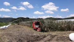 임실군 농작업대행단,농업인 효자역할 '톡톡'
