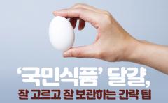 '국민식품' 달걀, 잘 고르고 잘 보관하는 간략 팁