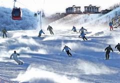 부영그룹 오투리조트, '스키 시즌권' 추가 판매···최대 57% 할인