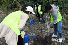 유진투자증권, 서울 상암동 '제2차 유진의 숲' 조성사업 완료
