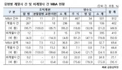 """대기업 계열사 간 M&A 편중…""""외부 M&A 활성화해야"""""""