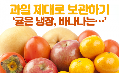과일 제대로 보관하기 '귤은 냉장, 바나나는···'