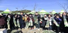 전국 대파 주산지 진도군, 진도약대파축제 23일 개최