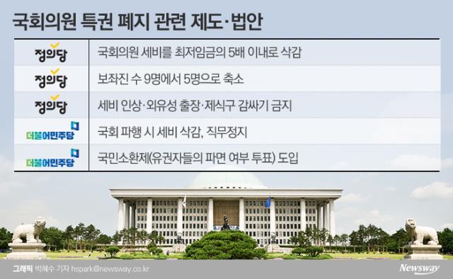 [NW리포트|국회를 국민에게④]여전한 '배지 권력'···말뿐인 특권 없애기