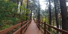 인천 미추홀구, 수봉공원 무장애나눔길 조성사업 준공
