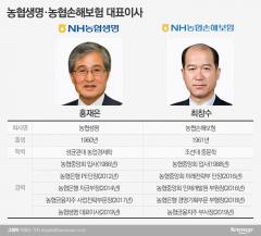 농협보험 CEO '희비'…농협손보 최창수號, 실적개선 과제