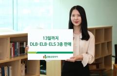 DB금융투자, DLB·ELB·ELS 등 3종 판매