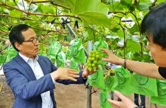 aT, 신선농산물 수출 최초 13억 달러 달성한다