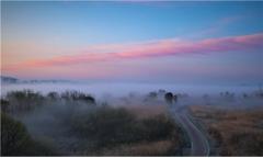 황룡강 장록습지 국가습지보호지역 지정 속도낸다