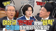 여상규, 한국당 향해 '버럭'…추미애 청문회서 무슨 일이?