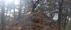 장수군,고대봉수 추가 발견