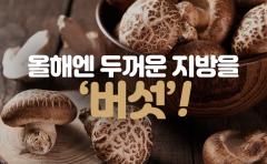 올해엔 두꺼운 지방을 '버섯'!