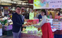 경북도, 친환경 종이 과일포장재 보급