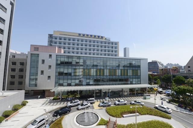 전남대병원, 경피적 대동맥 판막 치환술 지방 최초 100례 돌파