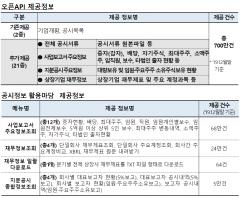 금감원, 'Open DART' 시범운영…공시 정보공개 폭 늘린다