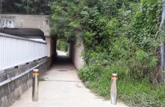 칠곡군, '왜관 대동다숲-등기소간 부체도로' 개선