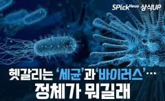 헷갈리는 '세균'과 '바이러스'…정체가 뭐길래