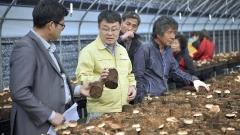 장수군, 버섯재배 품목·재배방법 다양화로 안정적 소득기반 확대