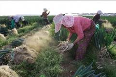 전남도, 공익형직불제 등 올해 농정예산 1조2천억